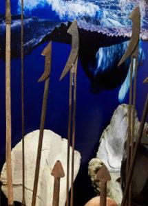 kaikoura museum discover fishing whaling